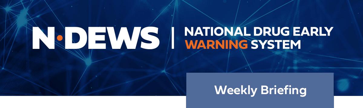 NDEWS Weekly Briefing Header